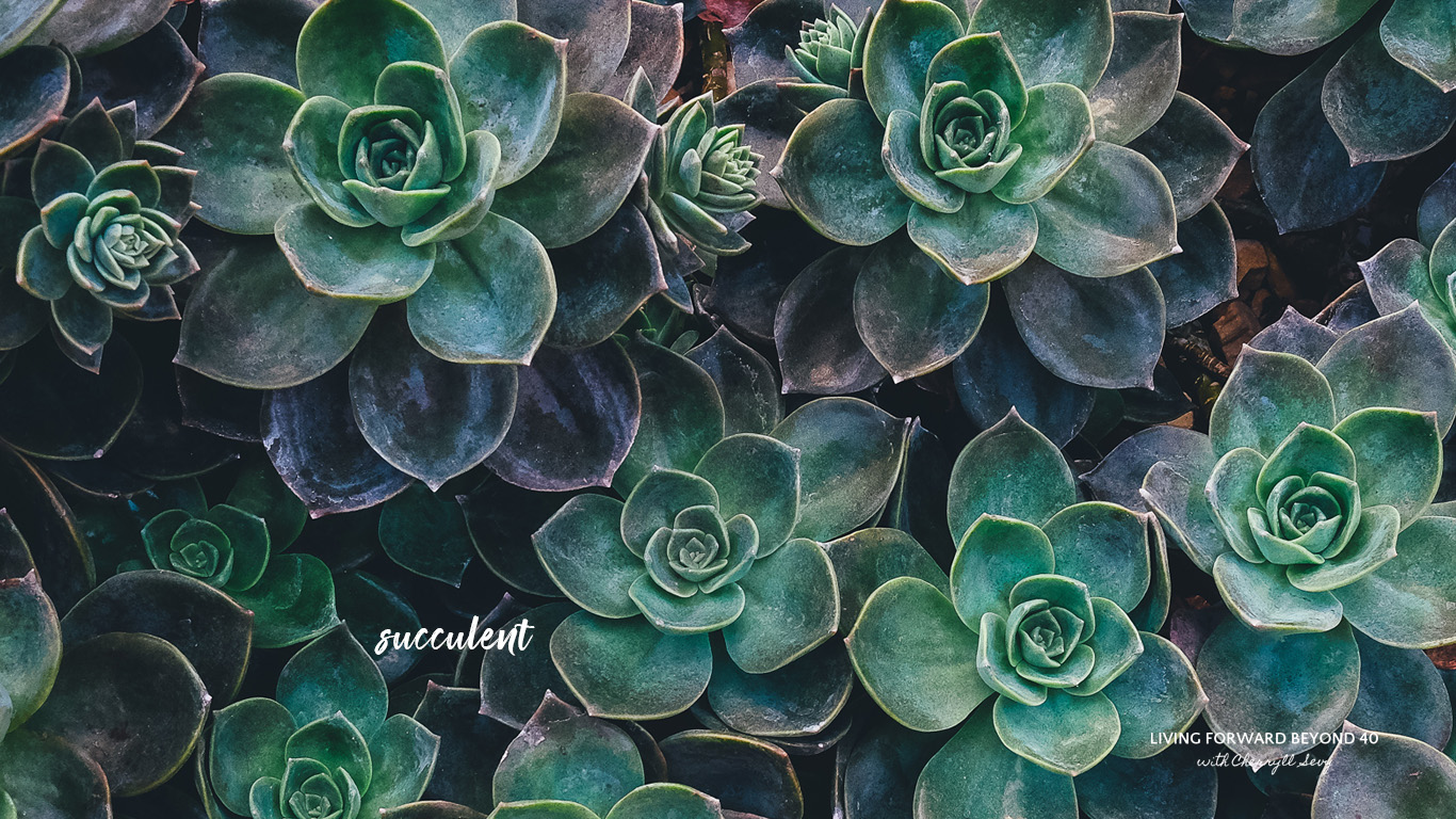 Wallpaperwednesday Succulent Living Forward